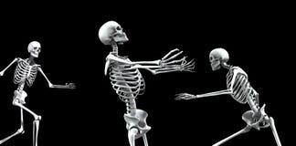 Ομάδα 4 σκελετών Στοκ εικόνες με δικαίωμα ελεύθερης χρήσης