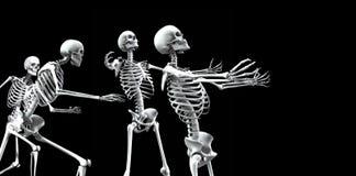 Ομάδα 5 σκελετών Στοκ εικόνα με δικαίωμα ελεύθερης χρήσης