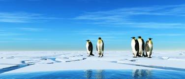 Ομάδα penguins ελεύθερη απεικόνιση δικαιώματος