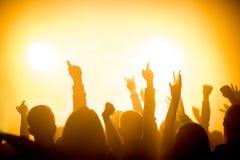Ομάδα ανθρώπων που απολαμβάνει μια συναυλία στοκ εικόνες