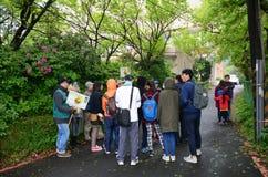 Ομάδα ανθρώπων που περπατά μέσω του πράσινου δάσους στοκ εικόνες