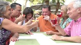 Ομάδα ανώτερων φίλων που απολαμβάνουν τα κοκτέιλ στο φραγμό από κοινού απόθεμα βίντεο