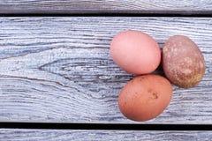 Ομάδα αυγών κοτόπουλου Στοκ εικόνες με δικαίωμα ελεύθερης χρήσης