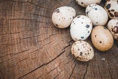 Ομάδα αυγών ορτυκιών στην ξύλινη επιφάνεια Στοκ φωτογραφίες με δικαίωμα ελεύθερης χρήσης