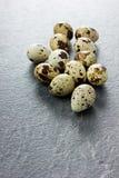 Ομάδα αυγών ορτυκιών Στοκ φωτογραφίες με δικαίωμα ελεύθερης χρήσης