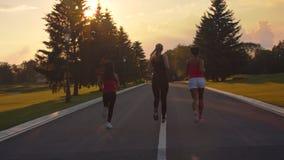 Ομάδα γυναικών που τρέχουν στο ηλιοβασίλεμα Πίσω άποψη του τρεξίματος τριών γυναικών ικανότητας απόθεμα βίντεο