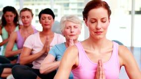 Ομάδα ειρηνικών γυναικών στο στούντιο ικανότητας που κάνει τη γιόγκα απόθεμα βίντεο