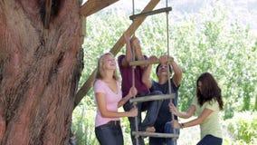Ομάδα εφήβων που παίζουν στη σκάλα σχοινιών φιλμ μικρού μήκους