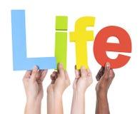 Ομάδα ζωής εκμετάλλευσης χεριών Multiethnic Στοκ φωτογραφία με δικαίωμα ελεύθερης χρήσης