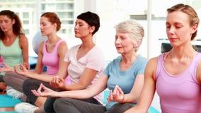 Ομάδα ικανοποιημένων γυναικών στο στούντιο ικανότητας που κάνει τη γιόγκα απόθεμα βίντεο