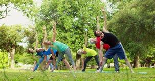 Ομάδα ικανότητας που κάνει τη γιόγκα στο πάρκο απόθεμα βίντεο