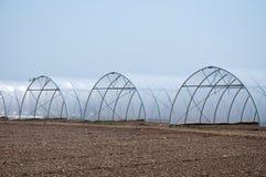 ομάδα νέων θερμοκηπίων που χρησιμεύουν να κάνουν τα λαχανικά να αυξηθούν Στοκ Φωτογραφία