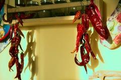 Ομάδα ξηρών κόκκινων πιπεριών τσίλι σε μια σειρά Στοκ Φωτογραφίες