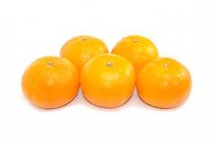 Ομάδα πέντε πορτοκάλια στο άσπρο υπόβαθρο Στοκ εικόνα με δικαίωμα ελεύθερης χρήσης