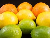 Ομάδα πορτοκαλιού ασβέστη λεμονιών τρία Στοκ Εικόνα