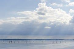 Ομάδα σκέιτερ πάγου Στοκ εικόνα με δικαίωμα ελεύθερης χρήσης