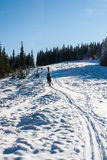Ομάδα τουριστών στο χιονισμένο λόφο Στοκ εικόνες με δικαίωμα ελεύθερης χρήσης