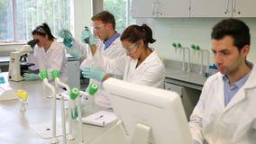 Ομάδα των νέων σπουδαστών επιστήμης που εργάζονται μαζί στο εργαστήριο απόθεμα βίντεο
