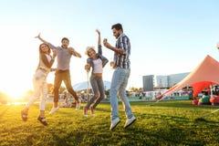 Ομάδα φίλων μαζί στο πάρκο που έχει τη διασκέδαση στοκ εικόνες με δικαίωμα ελεύθερης χρήσης