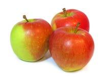 Ομάδα ώριμων μήλων που απομονώνεται σε ένα άσπρο υπόβαθρο Στοκ Εικόνες