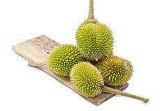 Ομάδα Durian στο σαφές ξύλο Στοκ Εικόνες
