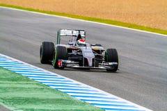 Ομάδα Sauber F1, Adrian Sutil, 2014 Στοκ Εικόνες