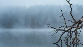 Ομίχλη και υδρονέφωση ξημερωμάτων επάνω από μια ήρεμη λίμνη στη Λιθουανία φιλμ μικρού μήκους