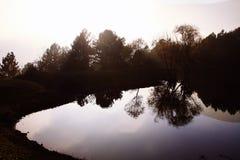Ομίχλη πρωινού πέρα από τη λίμνη Αντανάκλαση των δέντρων στο νερό της λίμνης Idyll και χαλάρωση στοκ εικόνα με δικαίωμα ελεύθερης χρήσης