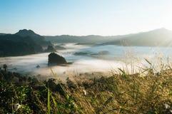 Ομίχλη πρωινού στο βουνό με τη χειμερινή εποχή στοκ φωτογραφίες με δικαίωμα ελεύθερης χρήσης