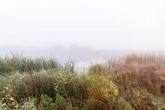Ομίχλη στα ξημερώματα σε μια μικρή λίμνη στοκ φωτογραφία με δικαίωμα ελεύθερης χρήσης
