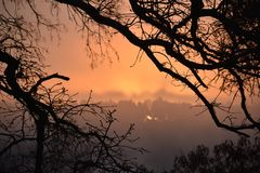 Ομίχλη στη λίμνη Winnsboro στο ανατολικό Τέξας Στοκ Εικόνα