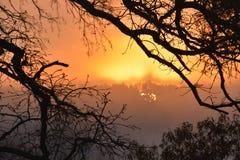 Ομίχλη στη λίμνη Winnsboro στο ανατολικό Τέξας Στοκ εικόνα με δικαίωμα ελεύθερης χρήσης