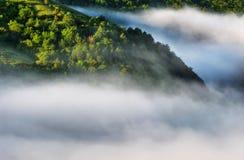 Ομίχλη στο φαράγγι ενός γραφικού ποταμού στοκ εικόνες