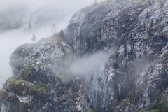 Ομίχλη στο Bluffs Στοκ Εικόνες