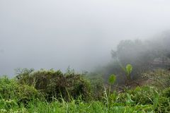 Ομίχλη το πρωί σε Mon Cham στοκ φωτογραφίες