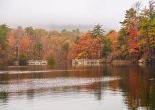 Ομίχλη φθινοπώρου στην ένωση του κρατικού πάρκου βράχου στοκ φωτογραφία με δικαίωμα ελεύθερης χρήσης