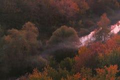Ομίχλη φθινοπώρου στοκ εικόνα με δικαίωμα ελεύθερης χρήσης
