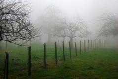 ομίχλη Στοκ Φωτογραφία