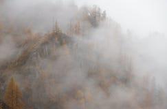 Ομίχλη βουνών Στοκ Εικόνα