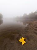 Ομίχλη και υδρονέφωση σε έναν άγριο ποταμό Στοκ Εικόνες