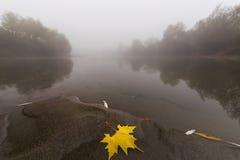 Ομίχλη και υδρονέφωση σε έναν άγριο ποταμό Στοκ Φωτογραφίες