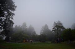 Ομίχλη πέρα από μια παιδική χαρά Στοκ φωτογραφία με δικαίωμα ελεύθερης χρήσης