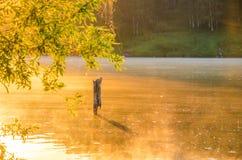Ομίχλη πέρα από το νερό Στοκ φωτογραφία με δικαίωμα ελεύθερης χρήσης