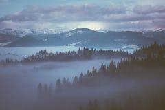 Ομίχλη πρωινού στα βουνά στοκ εικόνα