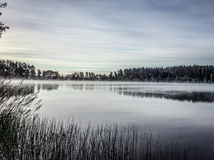 Ομίχλη πρωινού στη λίμνη Στοκ Εικόνες