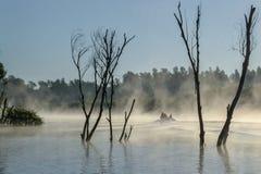 Ομίχλη πρωινού στο δέλτα Δούναβη Στοκ Εικόνες