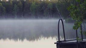Ομίχλη στη δασική λίμνη το πρωί απόθεμα βίντεο