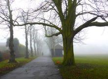 Ομίχλη στο πάρκο Κόκκινη σφαίρα βωλοκόπος Στοκ Εικόνα
