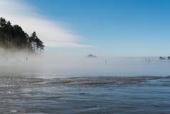 Ομίχλη στο Pacific Coast Στοκ Εικόνες