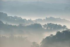ομίχλη το πρωί Στοκ Εικόνες